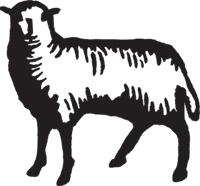 lamb200